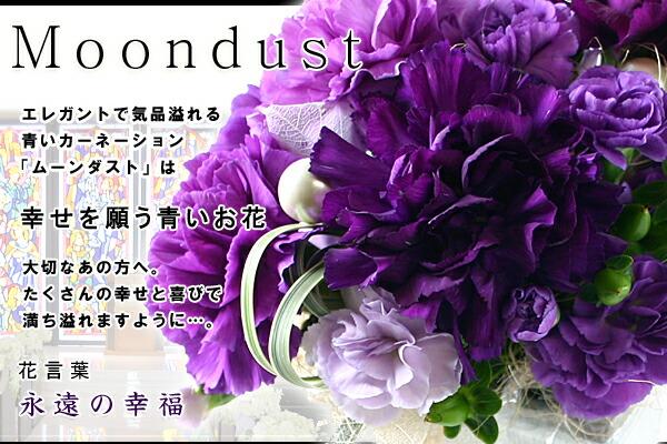 ムーンダストの画像 p1_14