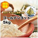 Most powerful powder bread a luxury (Golden yacht) 5 kg