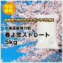 Hokkaido industrial flour spring love straight 5 kg