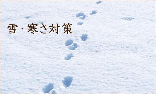 雪・寒さ対策