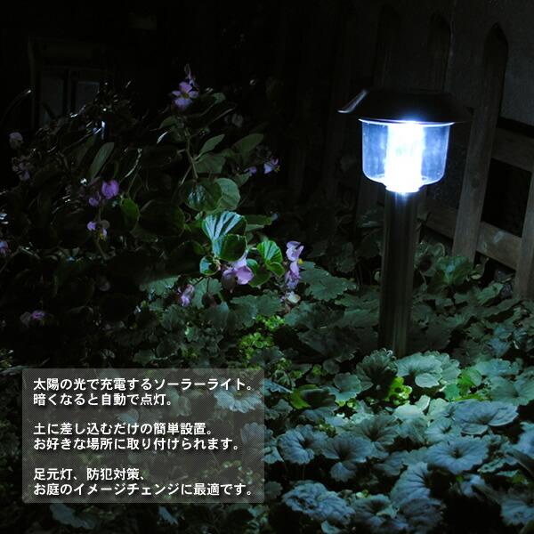 ライト WHITE