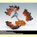 Bandai soul EFFECT IMPACT Magma Ver...
