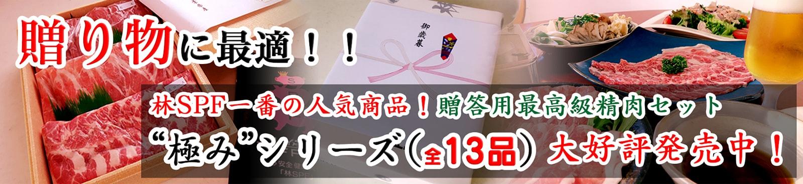 贈り物に最適!林SPF一番の人気商品!贈答用最高級精肉セット極みシリーズ(全13品)大好評発売中!