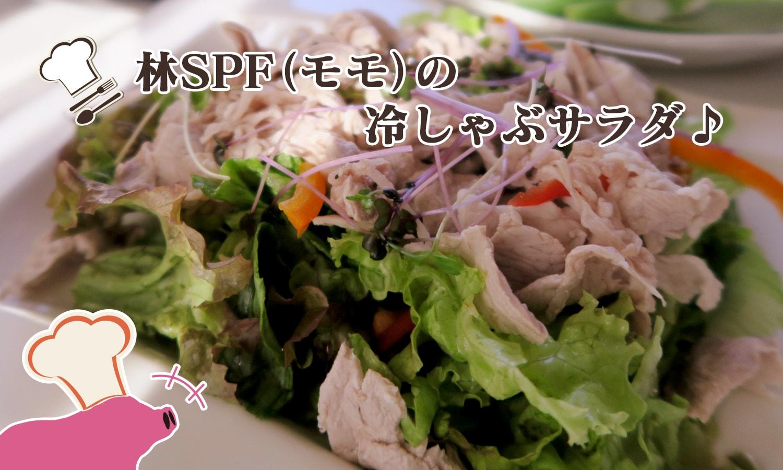 林SPF(モモ)の冷しゃぶサラダ
