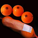 Frozen mandarin orange golf ball (entering three) fs3gm