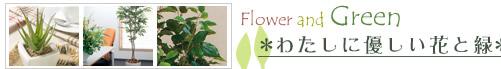 わたしに優しい花と緑