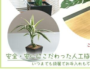 安心安全にこだわった人工観葉植物