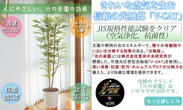 人にやさしい光触媒人工植物の4つのチカラ