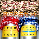 The finest coffee beans luxury 2 cans set Blue Mountain and Hawaiian Kona 10P28oct13