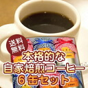 ! Authentic homemade roasted coffee 6 cans set 10P22Nov13