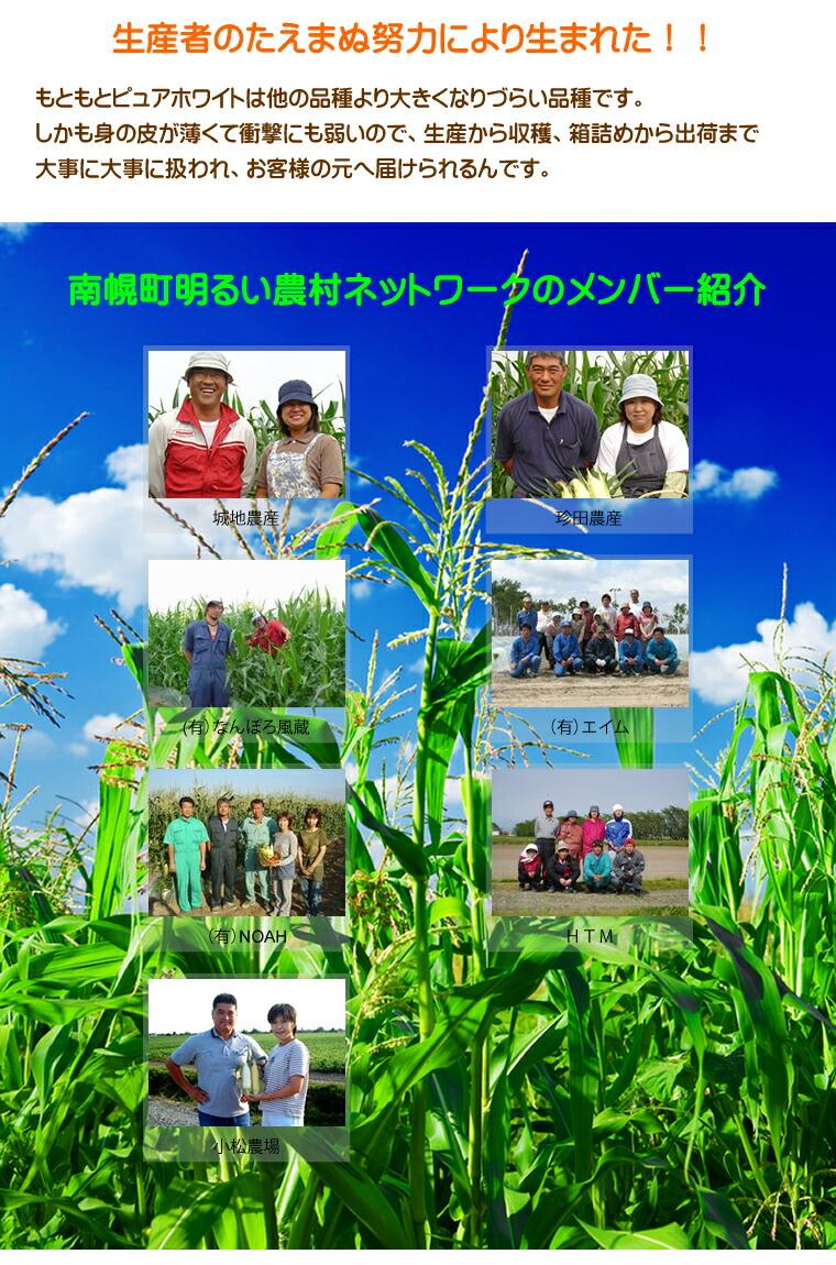 南幌町明るい農村ネットワーク ピュアホワイト