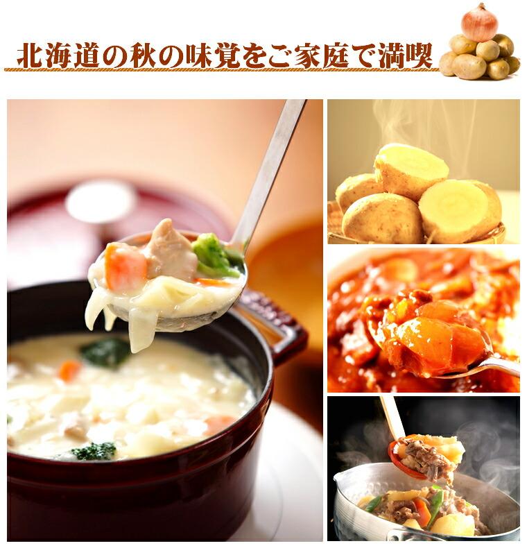北海道産 じゃが玉 Aセット(男爵薯&玉葱) 10kg