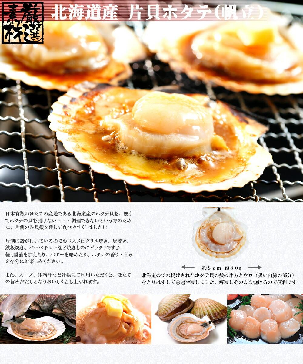【北海道直送】 特選 海鮮ギフトセット