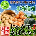 】 2014 ☆ shipment start! じゃが ball J set (potato & onion & pumpkin) from Hokkaido