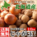 500 pt taste of autumn in Hokkaido in the gift (conditional upon confirmation), shipping! Hokkaido's ball A set (Baron potato & jade green onions) 10 kg