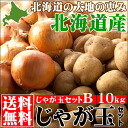 10 kg of 2014 ☆ reservation reception desk Middle Hokkaido product じゃが coin B sets (make in & onion)