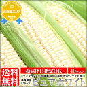 I eat in でお profit and gain it! During 2014 ★ last acceptance! Farm village network pure white (40) which Nanporo-cho is well acquainted with