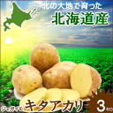 2014 ☆ start shipping! Potato Kite Akari 1 box 3 kg with
