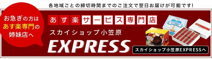 お急ぎのお客様はあす楽サービス専門店「スカイショップ小笠原EXPRESS」へどうぞ!