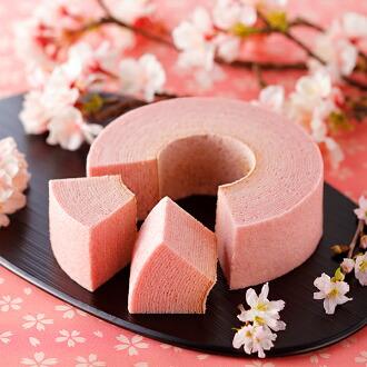 [石屋制菓] 櫻花年輪蛋糕TSUMUGI 【春季限定】