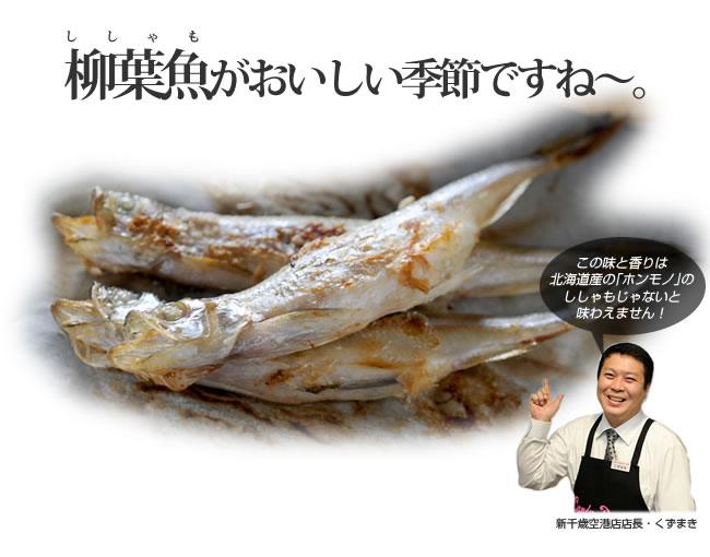 シシャモの画像 p1_21