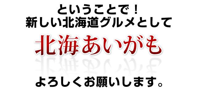 北海道の新グルメとして北海あいがもをよろしくお願いします!