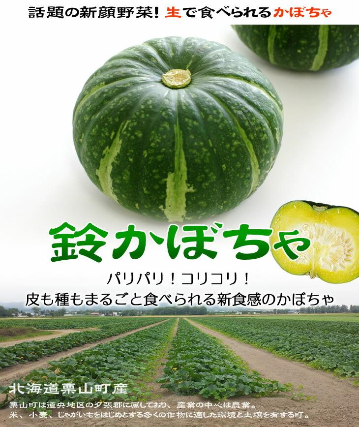 テレビでも紹介された生で食べられるかぼちゃ『鈴かぼちゃ』 生のまま食べられるかぼちゃ!北海道栗山