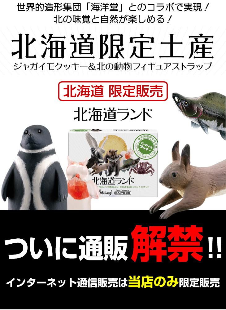 スカイショップ小笠原×海洋堂のコラボ商品!ついに通販解禁!
