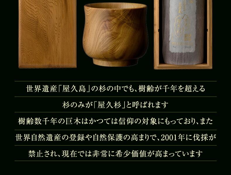 屋久杉は現在では非常に希少価値が高まっています