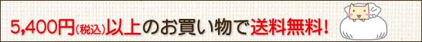 5400円(税込)以上で送料無料