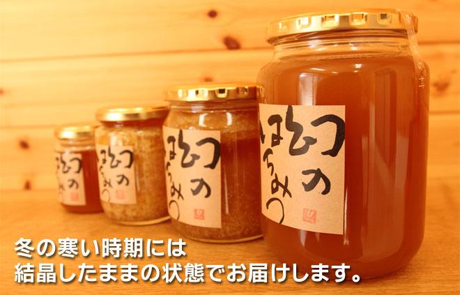 日本蜜蜂(ニホンミツバチ)のはちみつ 結晶