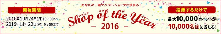 ����åס����֡��������䡼2016