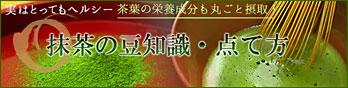 抹茶の豆知識