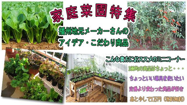 家庭菜園特集