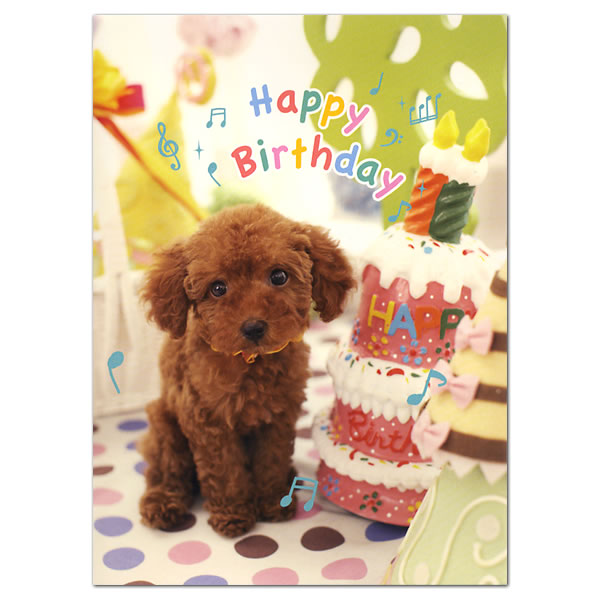 Ashiya HoriManshodo – Birthday Card for Dog