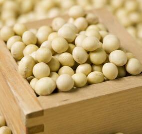 農薬・化学肥料不使用、国産大豆