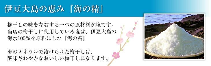 伊豆大島の恵み「海の精」