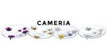 sghr �����ϥ� CAMERIA