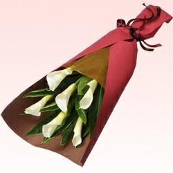 カラーの花束511305|ホワイトデー