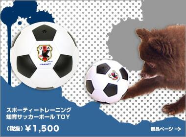 知育サッカーボール