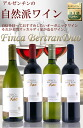 Organic wine Finca 4 book set of 4 breeds cool teen, natural