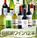 Attracted only biodynamic products! Wind and earth nature school wine 12 book set high quality wine