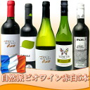 Carefully selected natural sect Vin 5 book set red wine 3 book 2 bottles of white wine organic ECOCERT certification 02P01Sep13