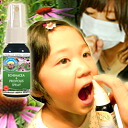 Nova Scotia & propolis spray 1 to 28 ml genuine /Echinacea / / / / organic / herbal / organic echinacea supplements /Supplement/Propolis / kids / kids ////fs3gm/ichi