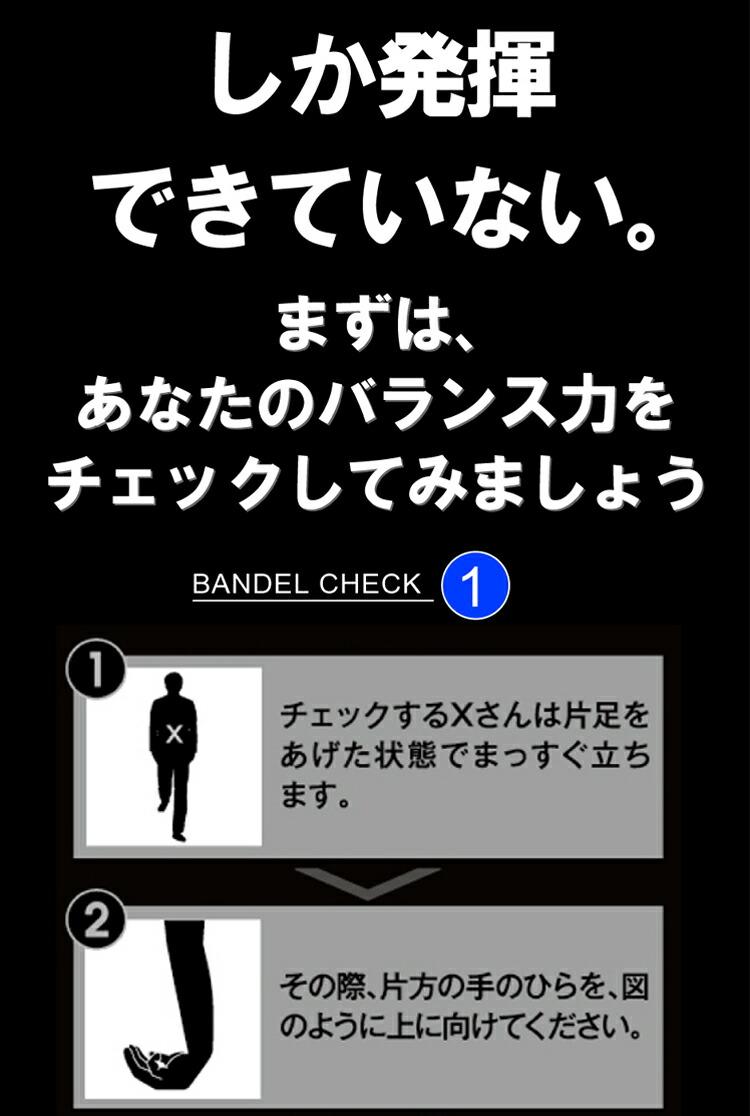 バンデルのバランス力チェック