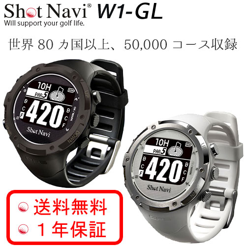 GW110i Plus