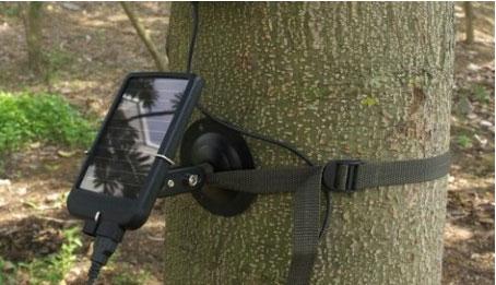 动物摄像机的太阳能电池