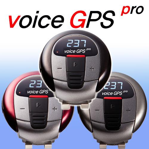 voicegpspro-1.jpg