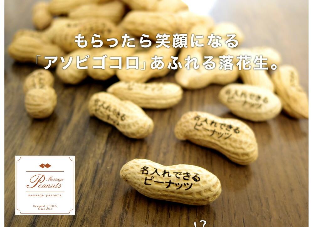 ピーナッツ名刺活用例