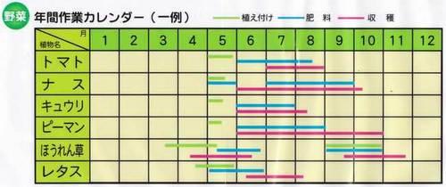 家庭菜園の年間作業カレンダー